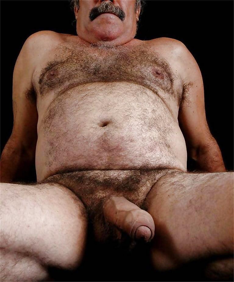 Naked free hairy gay bears