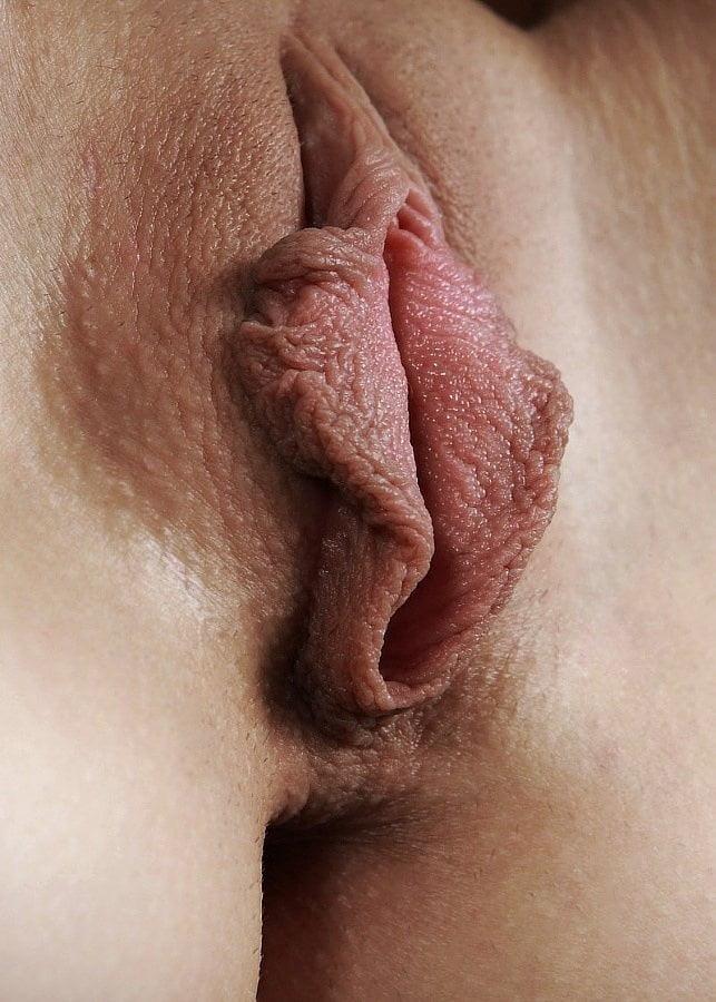 красивая жопа и пухлые половые губы бесстыдниц она перебралась после