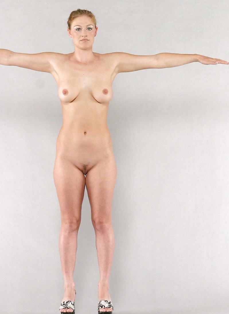 Anatomy Shemale Porn