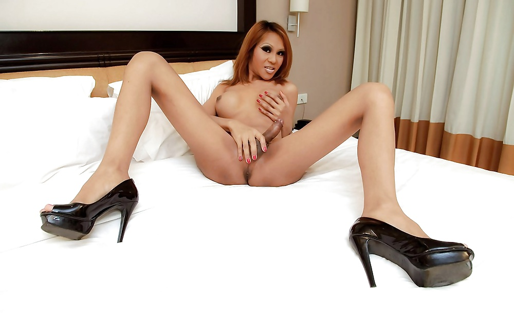 Sweet Tranny Babe Holly Parker Spread Her Long Legs To Fuck