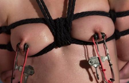 transsexual artificial sex organs