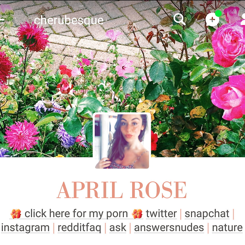 April Rose Cherubesque Porn april rose - 35 pics   xhamster