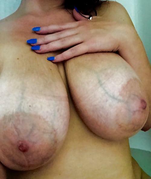 Blue vein tits