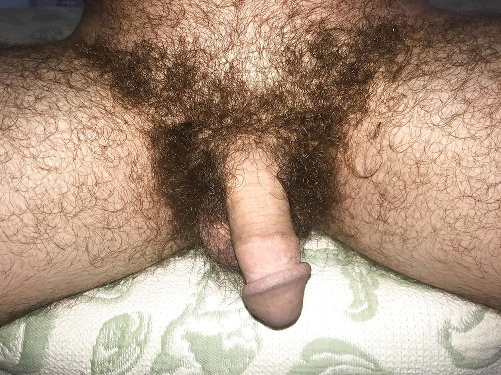 Hairy Cocks