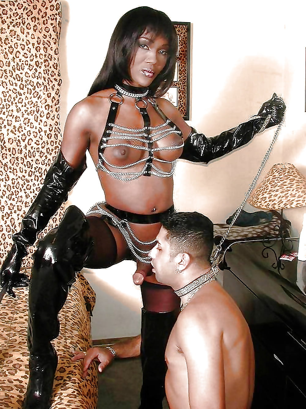 Shemale sex pics with black domination