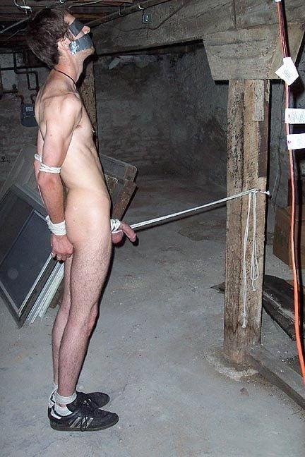 Naked Boys Tied Up Sex