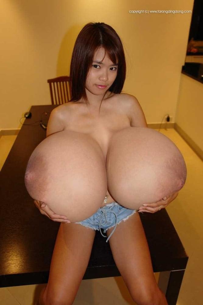 The biggest black tits-5007