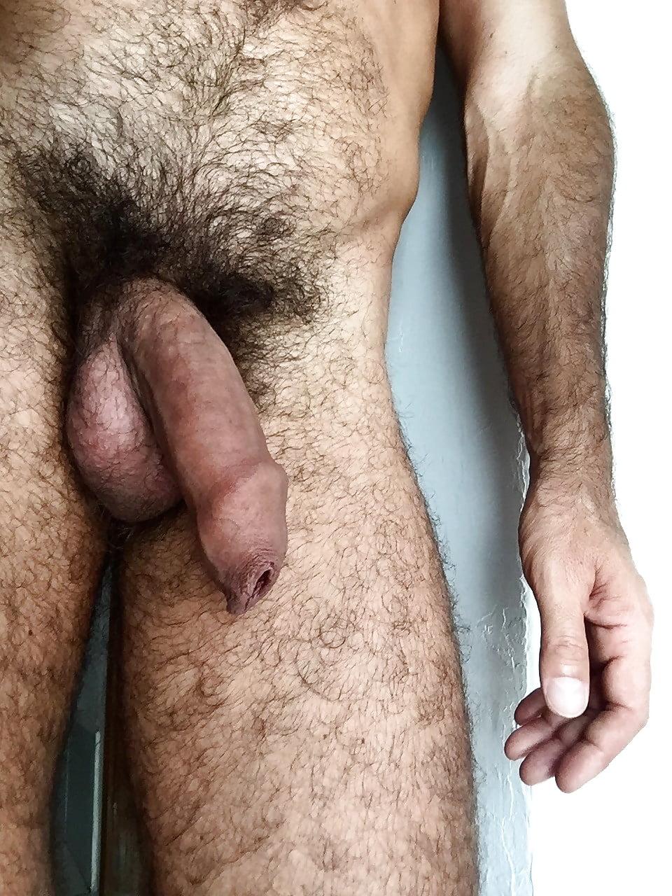 shaved-vs-hairy-cocks
