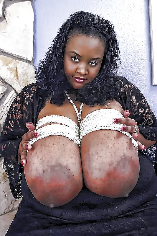 Milky Ebony Tits
