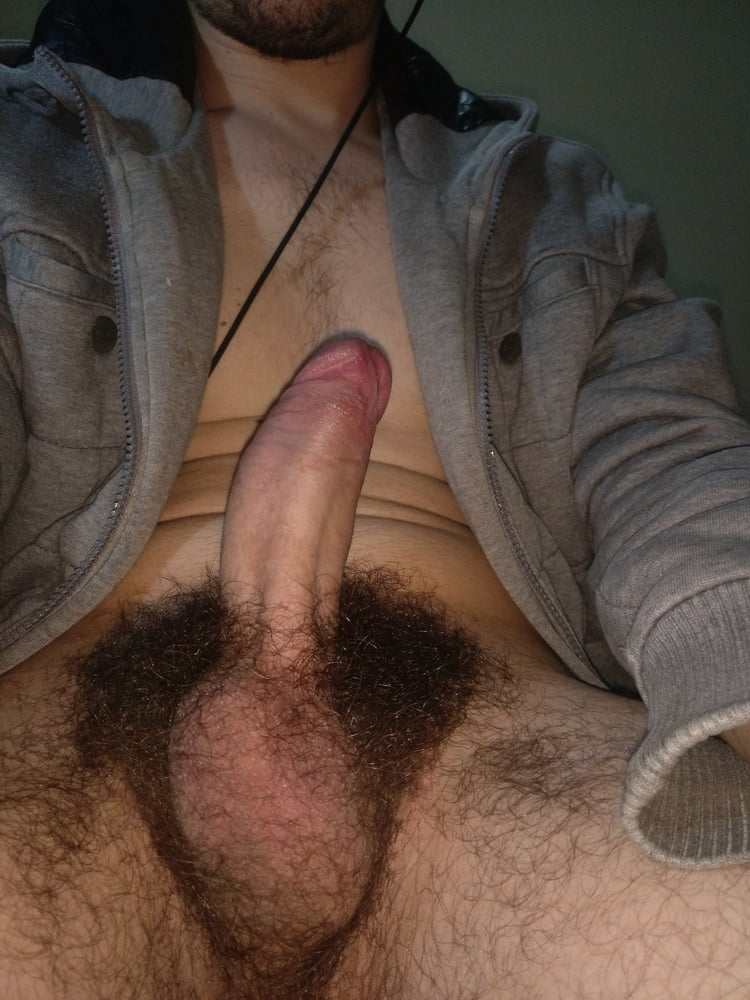 Pictures of hairy cocks 14