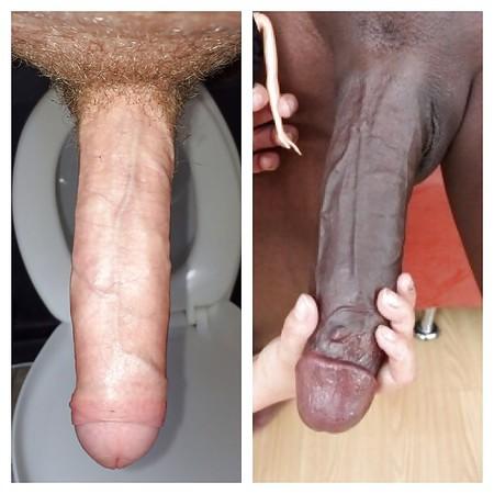 Mandingo Cock
