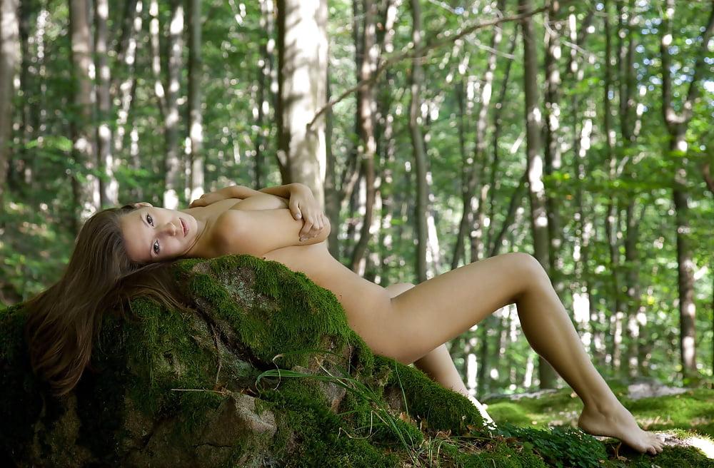Лес эротика видео — 9