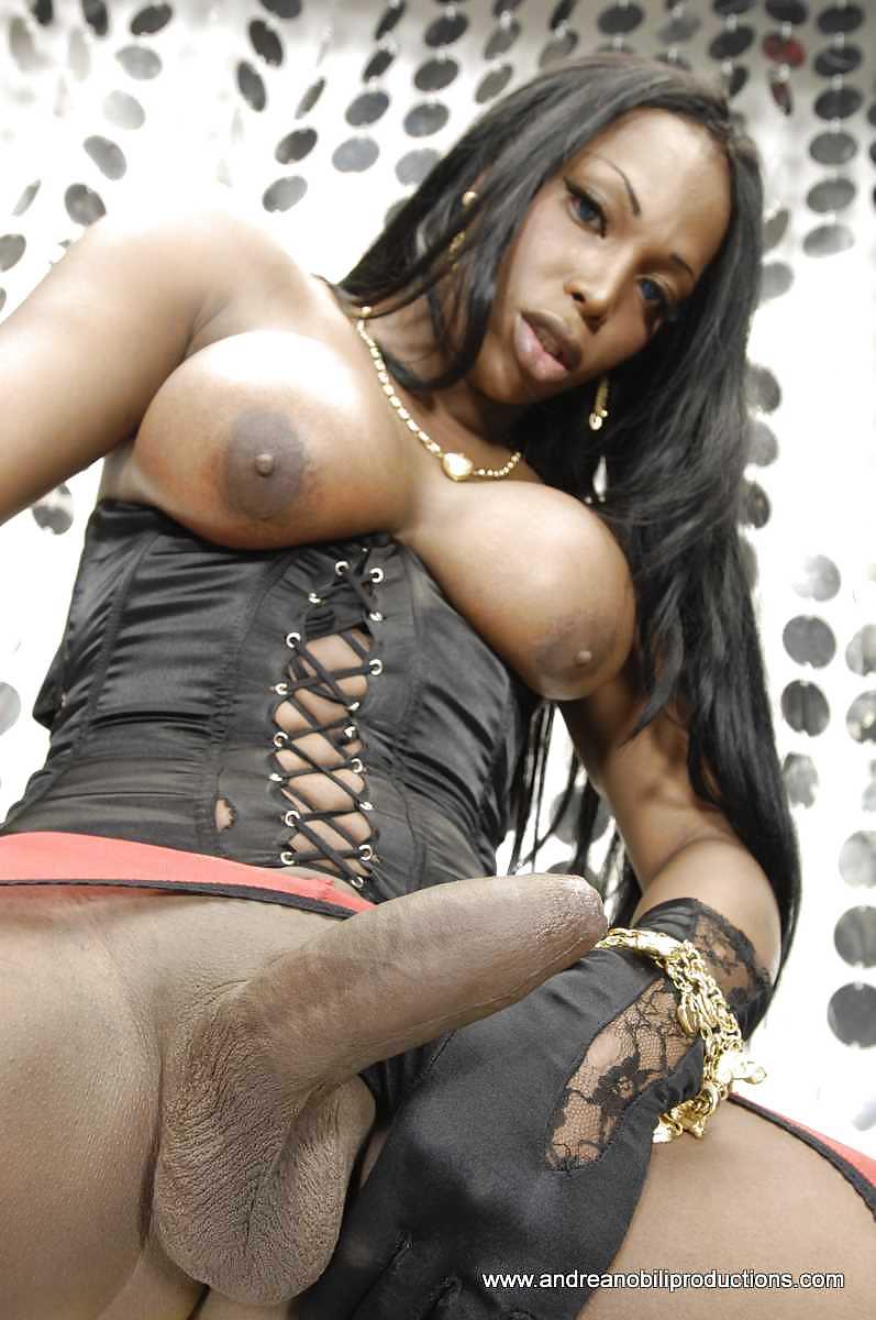 Shemale Porn Photos, Free Shemale Pics, Nude Tranny Pics