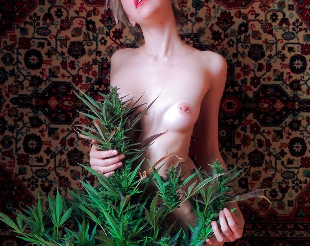 Weeds nude scenes aznude