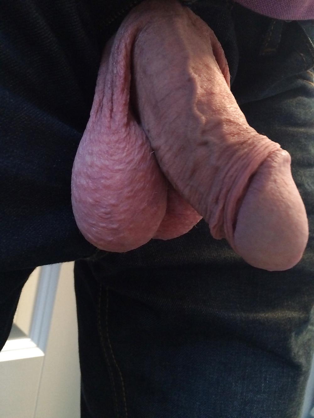 Big bull balls and little uncut cock