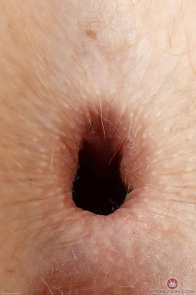 close up of ass holes