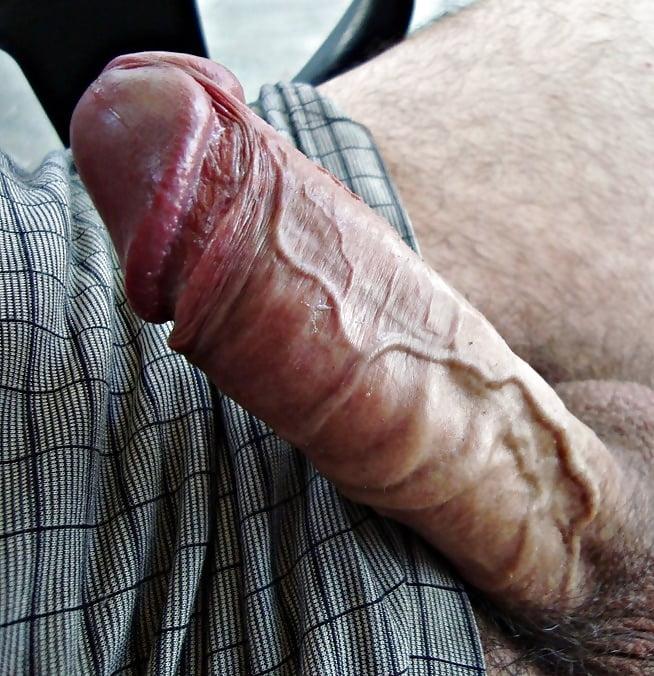 Big veiny cock porno