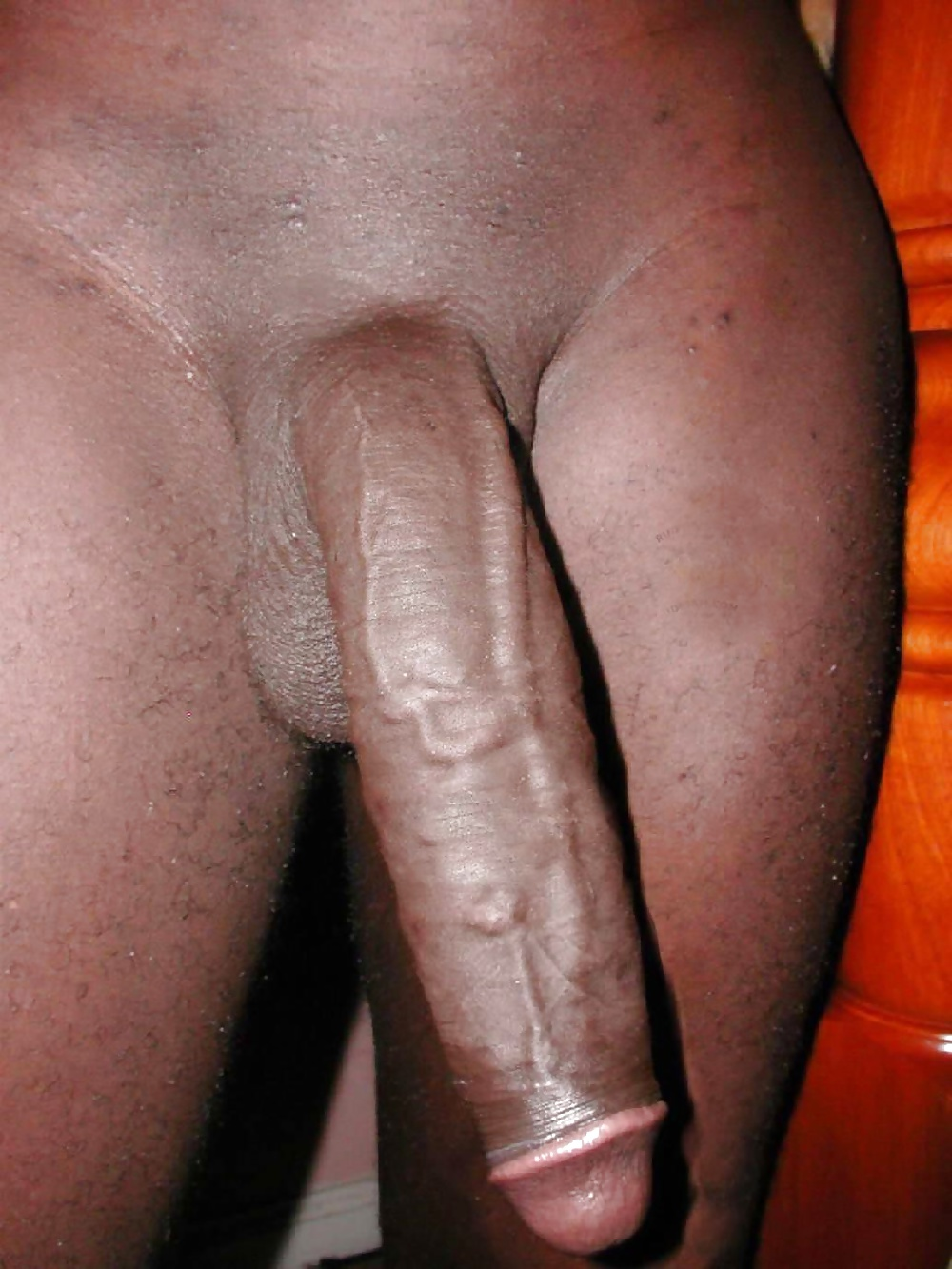 Black Dick White