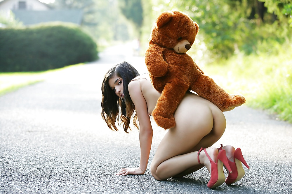 Mature Teddy Bear